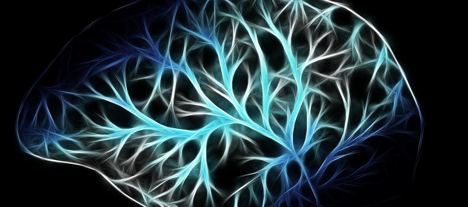 brain-ml.png