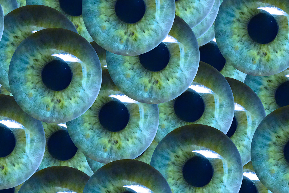 Could behavioral biometrics eradicate online fraud?