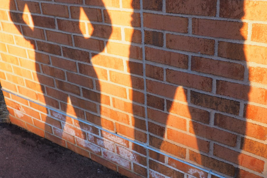 Shadow IT Running Rampant in Many Organizations despite Security Risks